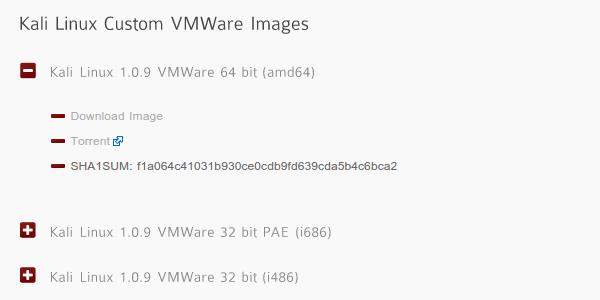 εγκατάσταση kali linux - το λειτουργικό των hacker 09