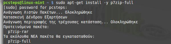 Δημιουργία USB Εκκίνησης στο Linux Mint - Ubuntu 06