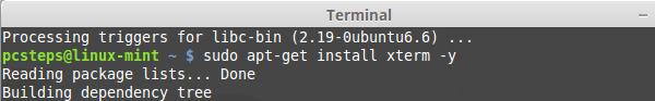Εγκατάσταση League of Legends στο Linux Mint - Ubuntu 04