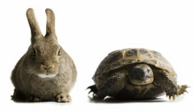 Αξιόπιστες Μέθοδοι για τη Μέτρηση Ταχύτητας του Ίντερνετ 11