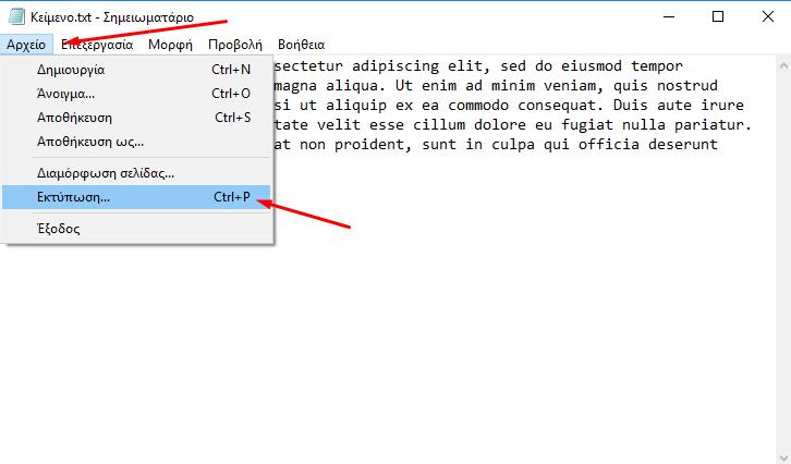 εκτύπωση σε PDF