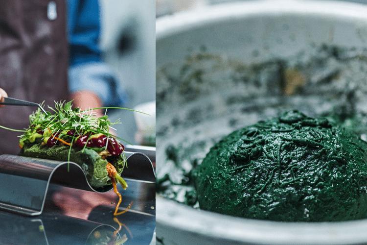 ViralSteps#29 - Βρήκαμε Τι Φταίει Με τα Τελωνεία, Σκαθαρομπιφτέκια, Εκτύπωση Sushi